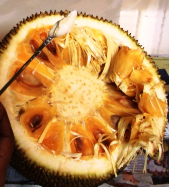 howtocutjackfruit_clean the gum at the centre using stick