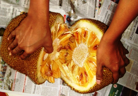 howtocutjackfruit_split it at the centre